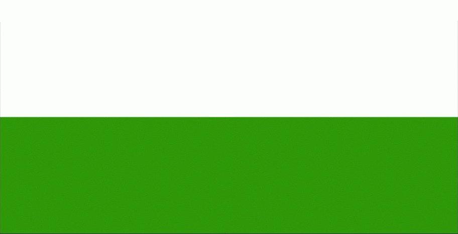 Прапор ФК Скали